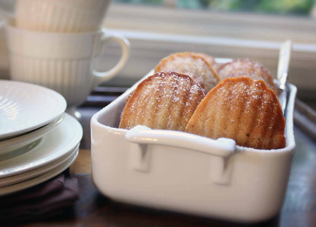 Honey Spiced Madeleines