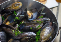 Moules Mariniere – Taking the Bait!